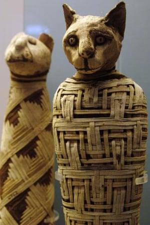 Mummy of a cat circa 1st century AD.