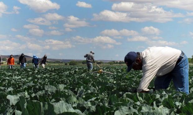 'This serves no purpose but to demonize immigrants.' Photograph: Gosia Wozniacka/AP