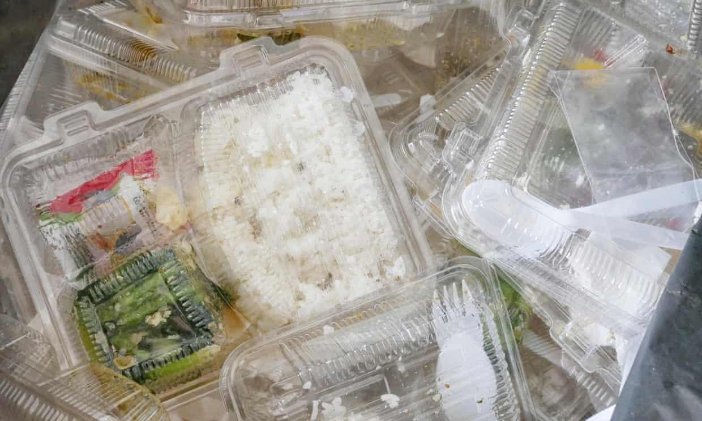 Fewer than 15% of recycling facilities surveyed could process plastic clamshells, like these. Photograph: Prakaymas vitchitchalao/Alamy