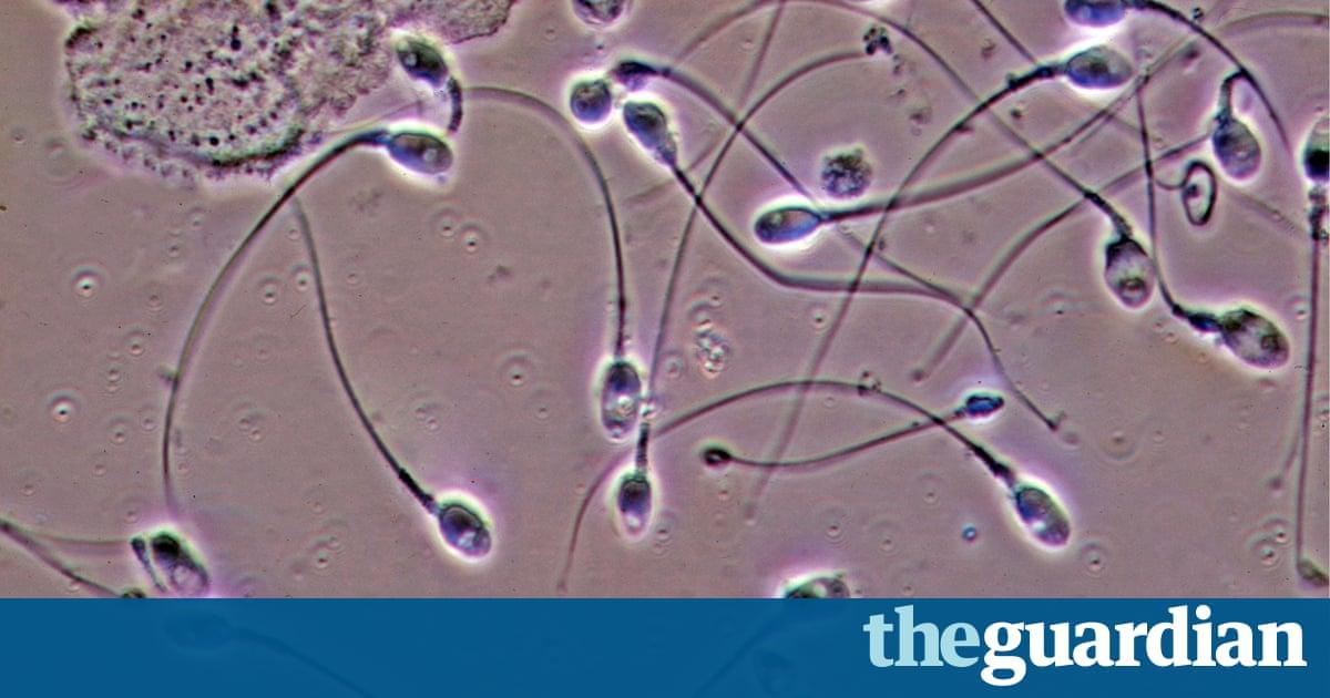 kakoy-gormon-otvechaet-za-podvizhnost-spermatozoidov