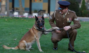British military working dog Mali poses for a photograph with his handler, Corporal Daniel Hatley, after receiving the PDSA Dickin Medal, the animal Victoria Cross, on 17 November.