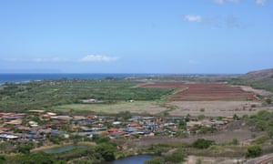 Pesticides in paradise: Hawaii's spike in birth defects puts focus on GM crops  3455