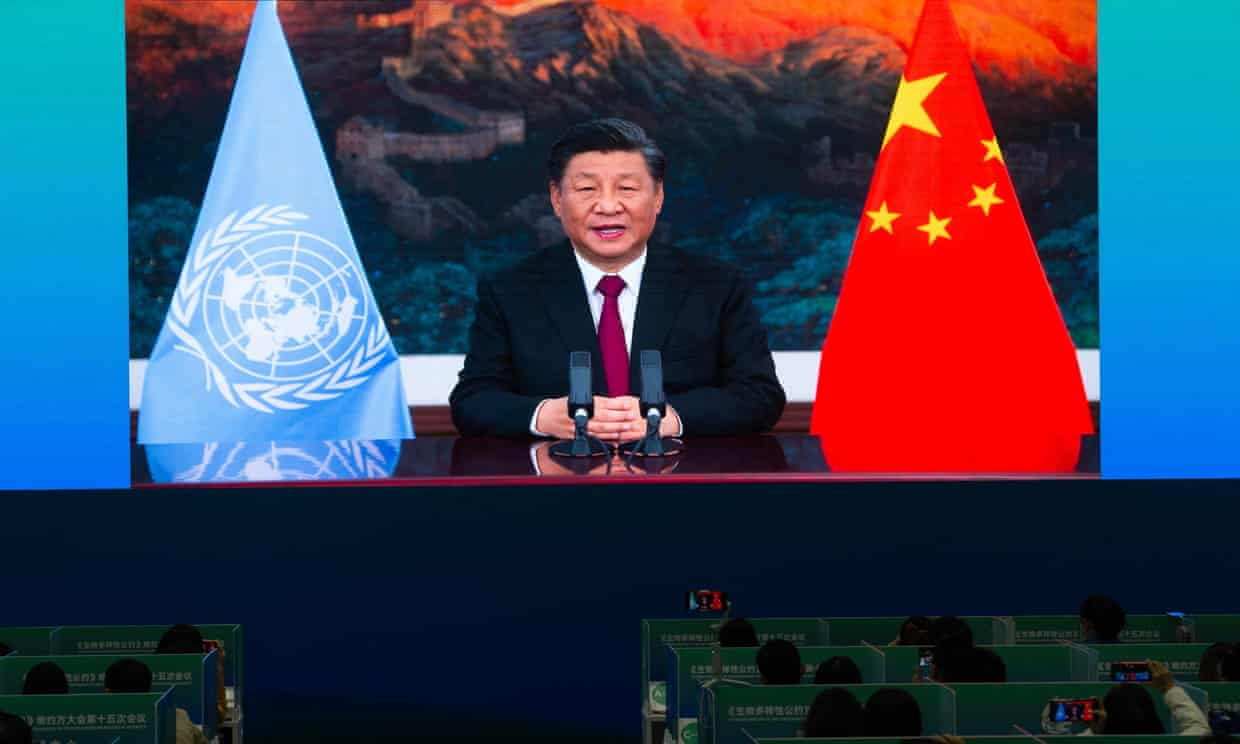 China's President Xi Jinping opens the UN biodiversity conference (Cop15) in Kunming. Ecological harmony is one principle of 'Xi Jinping Thought'. Photograph: AFP/Getty