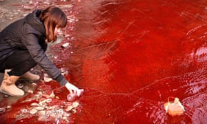 Onesnažena kitajska reka; Fotografija: China Daily/Reuters