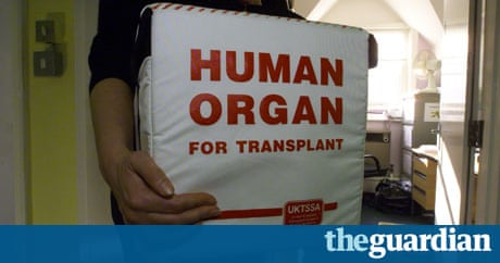 essay on human organ transplant