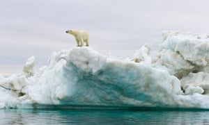 Polar bear standing atop an iceberg floating in the Beaufort Sea, Arctic Ocean, Alaska