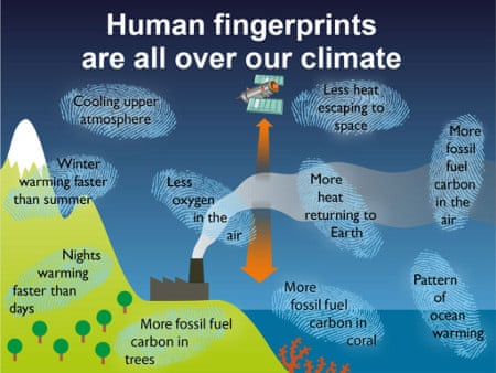 global warming causes effects essay