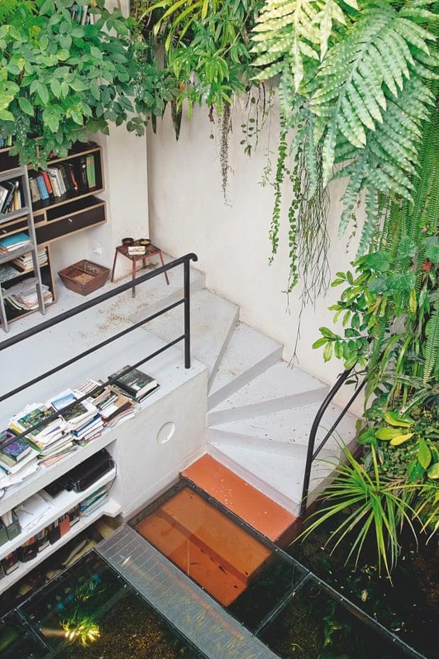 Vertical gardening 1