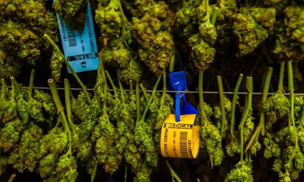 Medicine Man Denver is the single largest legal medical and recreational marijuana dispensary in Denver, Colorado .