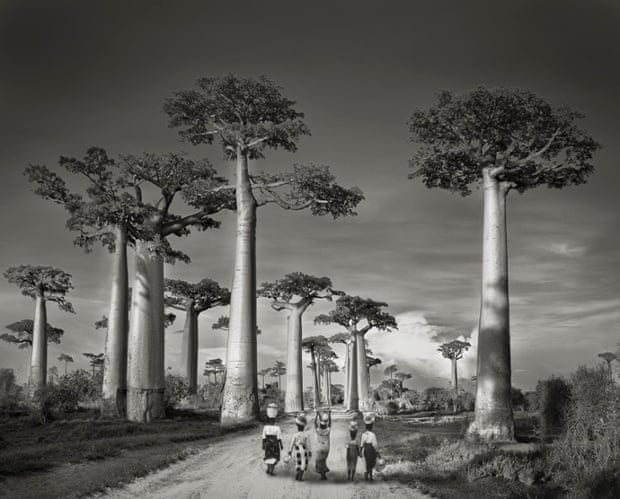 Off to Market, Madagascar, 2006