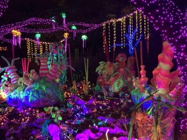 Zoo Lights in Houston, Texas.