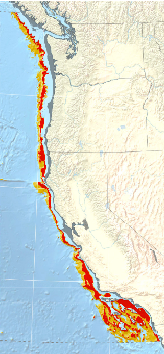 Visualization of the extent of low-oxygen seafloor at 14,000 years ago mid-way through the deglaciation. The gray shading along the coastline is the paleoshoreline, or rather where the shoreline would been when sea level was 85 meters lower than today. Red seafloor is associated with severe hypoxia and orange seafloor is associated with intermediate hypoxia.