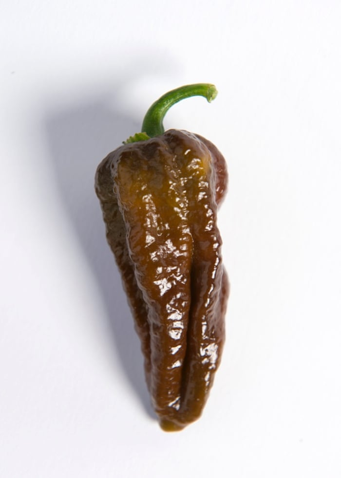 d2362e79-3299-4b88-a9c9-7e0927df91f1-727x1020 - Hottest chillies in the world, 2015 - Facts and Trivia