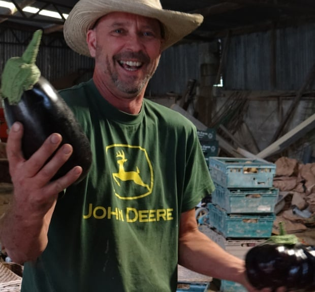 Nathan Richards at Troed y Rhiw farm is an expert aubergine grower.