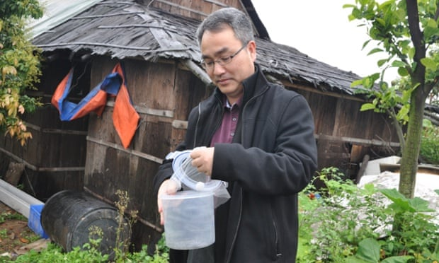 Xi Zhiyong releasing mosquitoes.