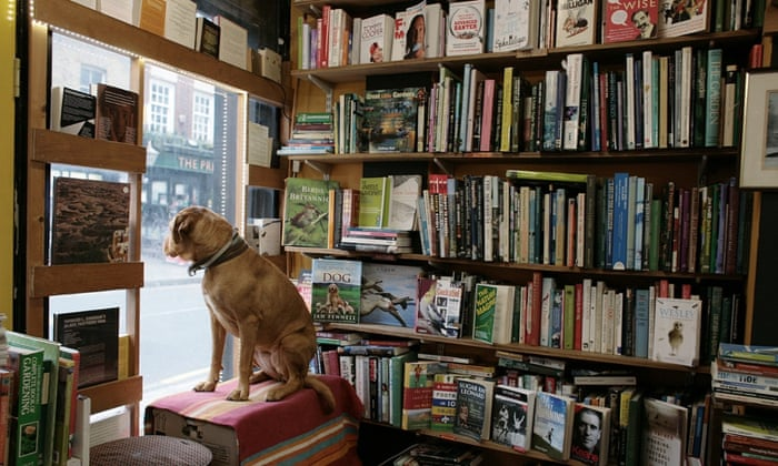 'Bookshops open byways that become high roads to new fields of understanding.' Photograph: Martin Godwin for the Guardian