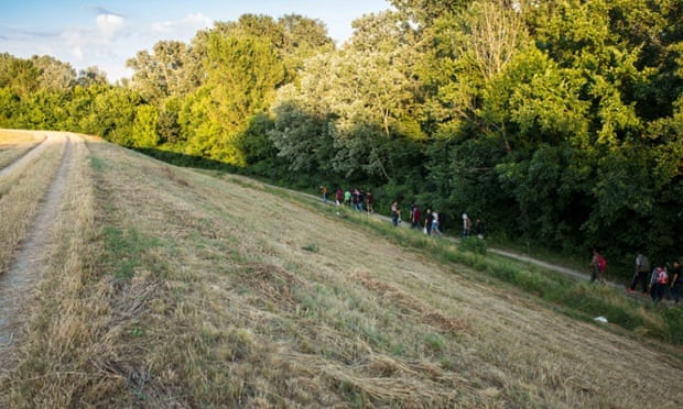 Syrian migrants make their way through the woods outside of Kanjiza, Serbia.