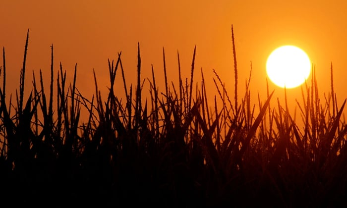 The sun rises in Pleasant Plains, Illinois on July 4, 3012 during a record breaking heat wave.