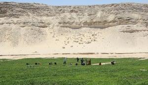 Sekem, Egypt