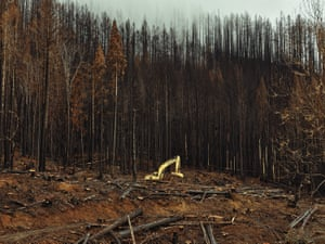 A dozer clears the burnt areas of the Holiday Farm fire near Blue River, Oregon, on Friday.