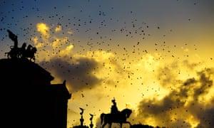 Starlings fly over the Altare della Patria monument in Rome