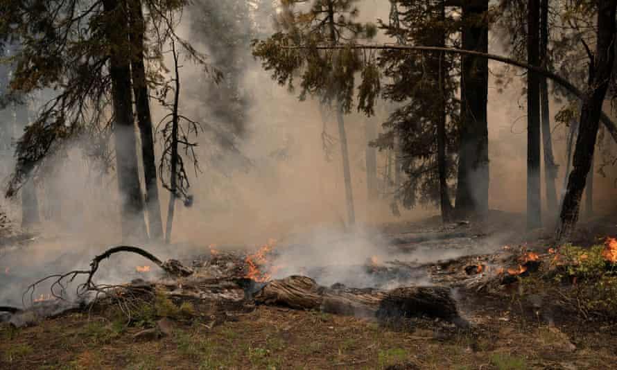 The Bootleg fire burns through vegetation near Paisley, Oregon.