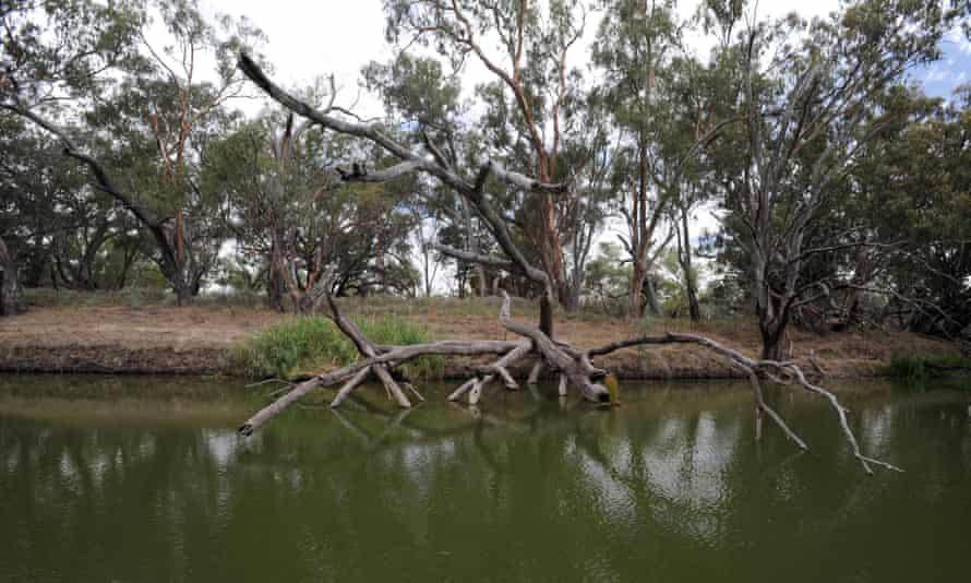 The Barwon river near Brewarrina