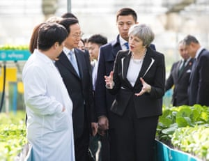 Theresa May talks with employees as she walks through a greenhouse full of lettuce at the Agrigarden research and development centre in Beijing.