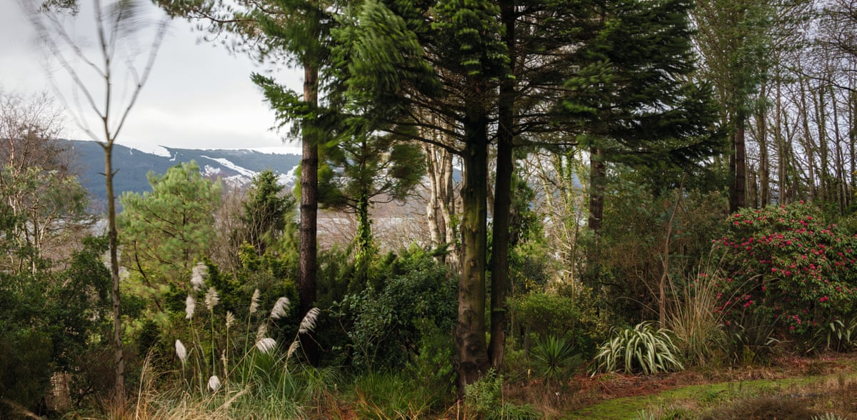 Linn Botanic Gardens A Scottish Arcadia In Pictures