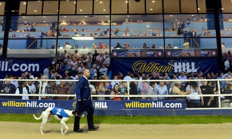 Greyhound racing in peril as Khan backs AFC Wimbledon plans