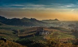 La dolce vita: prosecco country, in the northeast of the Veneto.