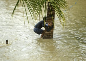 Zamboanga, Philippines: A villager holds on to a coconut tree during flooding. More heavy rain is expected as a tropical depression, Marilyn, intensifies wet conditions during monsoon season
