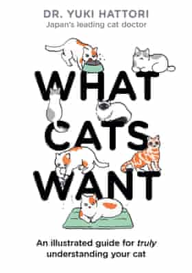 What Cats Want by Dr Yuki Hattori