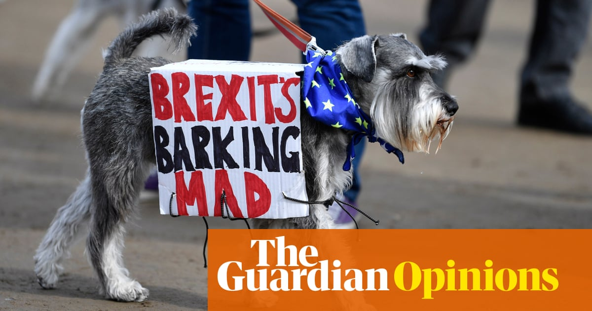 Why Brexit Is Making Fools Of Even The Cleverest People John Crace