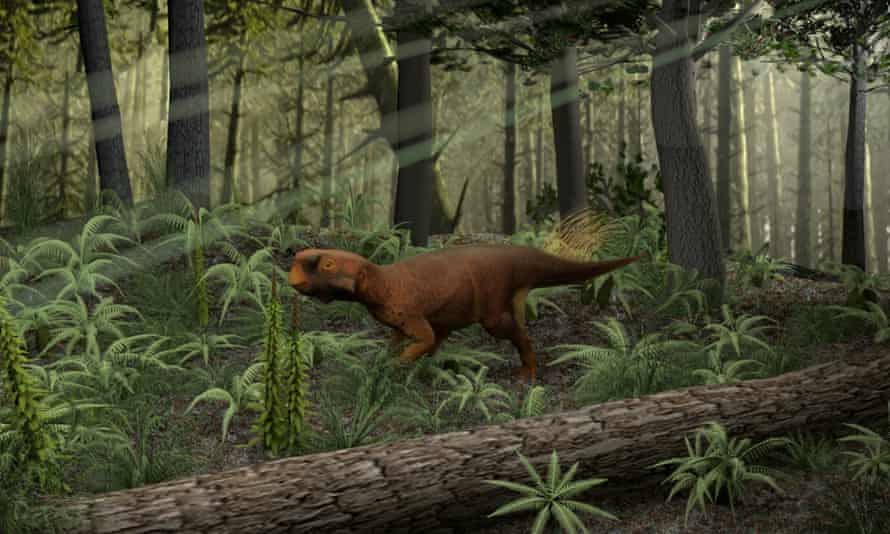 Psittacosaurus reconstructed in its probable Cretaceous forested habitat