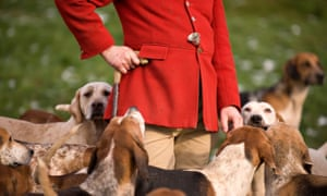 A fox hunt in the UK