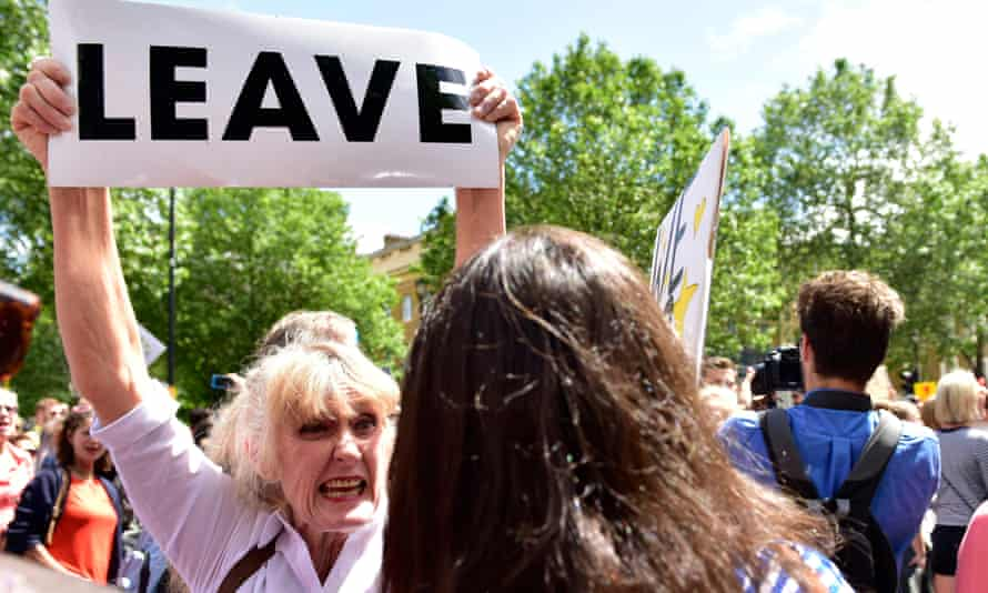 'A country bent on self-immolation': a Leave protester in London, July 2016