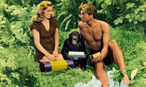 a still from the 1949 film Tarzan's Magic Fountain showing Brenda Joyce as Jane, Lex Barker as Tarzan and Cheeta in another uncredited central role.