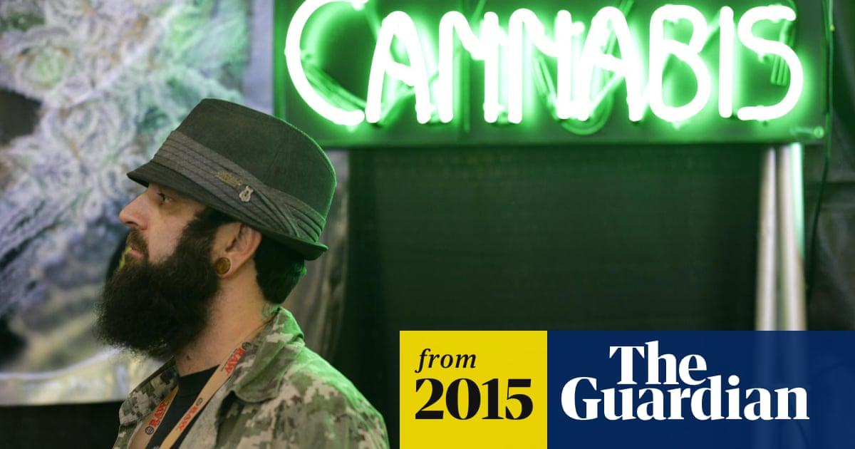 3843e4c898b2e High rollers  marijuana entrepreneurs harvest cash from legalised industry