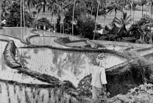 Henri Cartier-Bresson, Sumatra, Indonesia 1950