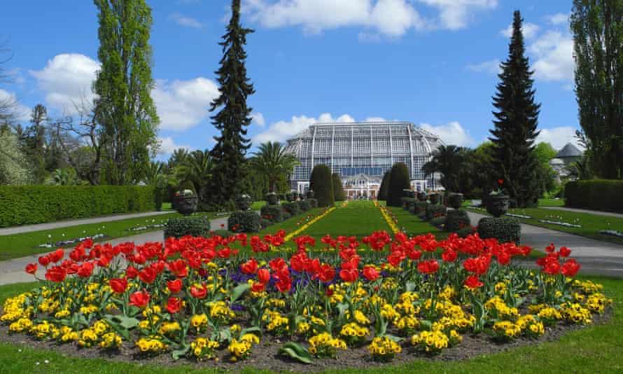 The botanical gardens in Berlin.