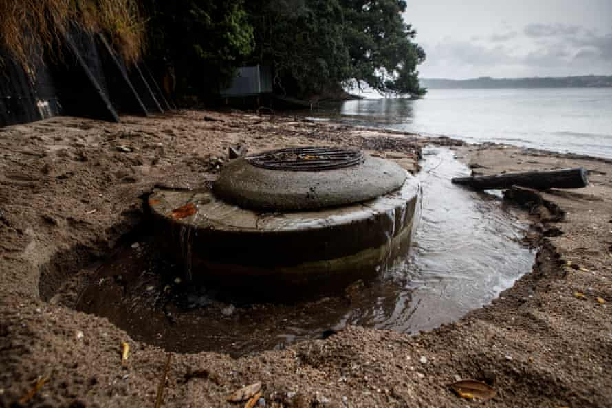 Auckland sewage and stormwater overflow issues