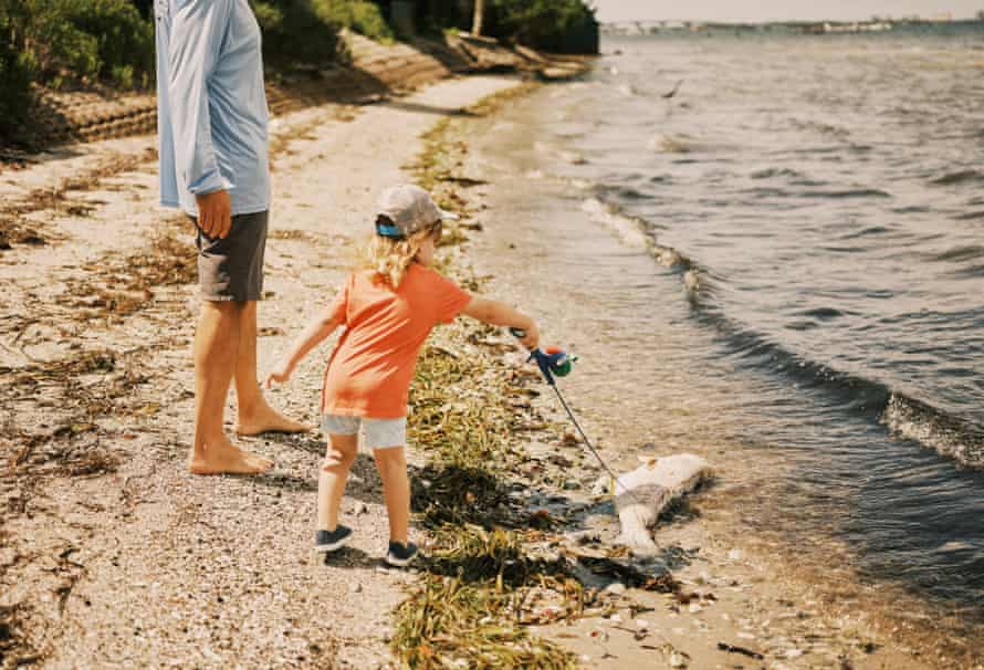 Justin Bloom, founder of Suncoast Waterkeeper, inspects dead fish with his son, Hudson. Bloom and the Waterkeeper launched a lawsuit against the Florida Department of Environmental Protection, among others, for the Piney Point industrial disaster in the spring.