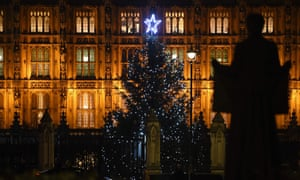 The Christmas trees in the grounds of the Palace of Westminster