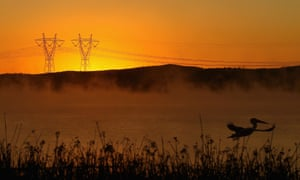 Power lines in early morning fog near the brown-coal-fuelled Hazelwood power station in Melbourne.