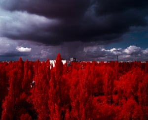 A storm approaching Pripyat from The Red Forest. (2012). Exclusion Zone, Chernobyl. 120mm CIR Photograph