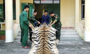 """Vietnam, one of Asia's biggest consumers of wildlife products, has suspended all imports of wild animal species """"dead or alive"""""""