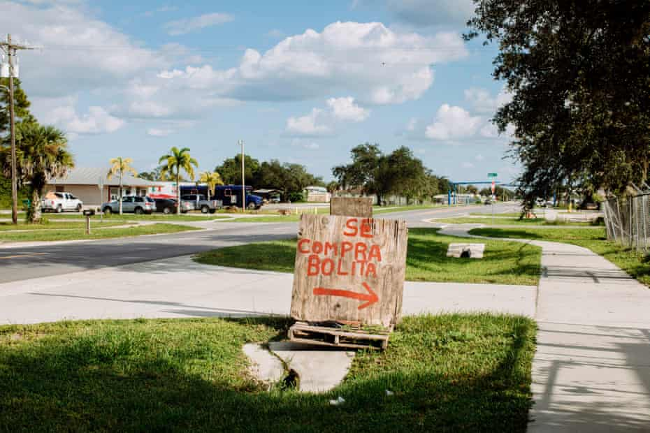 In Immokalee, Florida, many collectors of palmetto berries put up signs in Spanish for farmworkers that harvest the berries between August and October. Here, a sign reads 'we buy berries'.