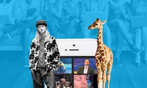 Mind the giraffe … it's not social media without an amusing animal.