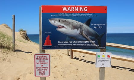 A sign warns visitors to Wellfleet's Cahoon Hollow Beach that great white sharks hunt seals along the coast.
